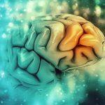 Relación entre encías y Alzheimer