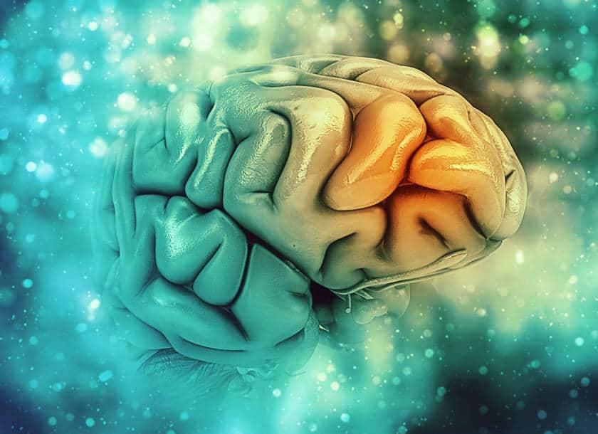 ¿Qué relación existe entre encías y Alzheimer?